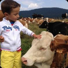 archivio-apt-valsugana---adotta-una-mucca---flavio-e-la-mucca-rossa