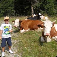archivio-apt-valsugana---adotta-una-muccalorenzo-tra-le-mucche