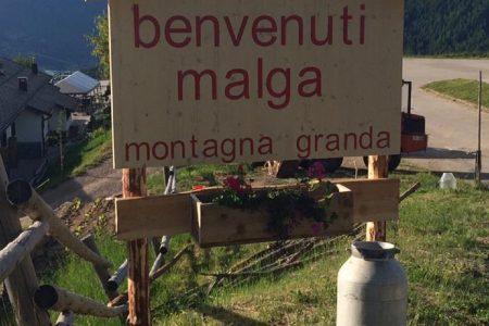 benvenuti a malga montagna granda