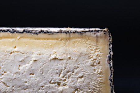 forma formaggio malga telvagola