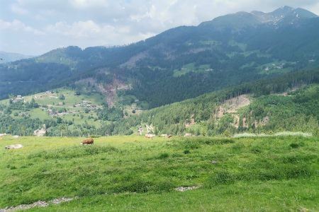 panorama malga montagna granda